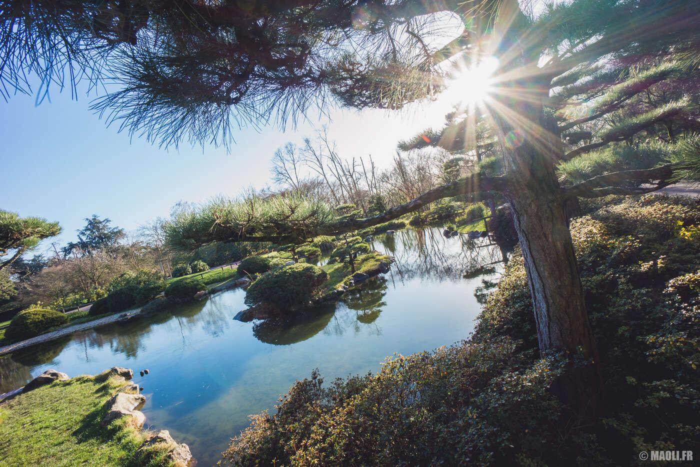 Düsseldorf jardin japonais japanischer garten