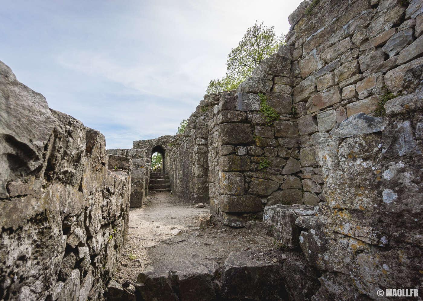 Remparts de château de Domfront
