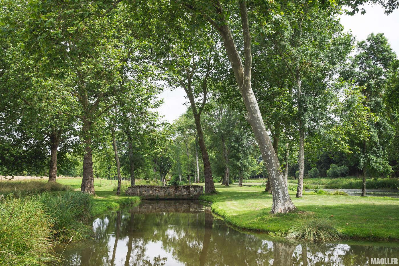 Jardin du château de Brissac