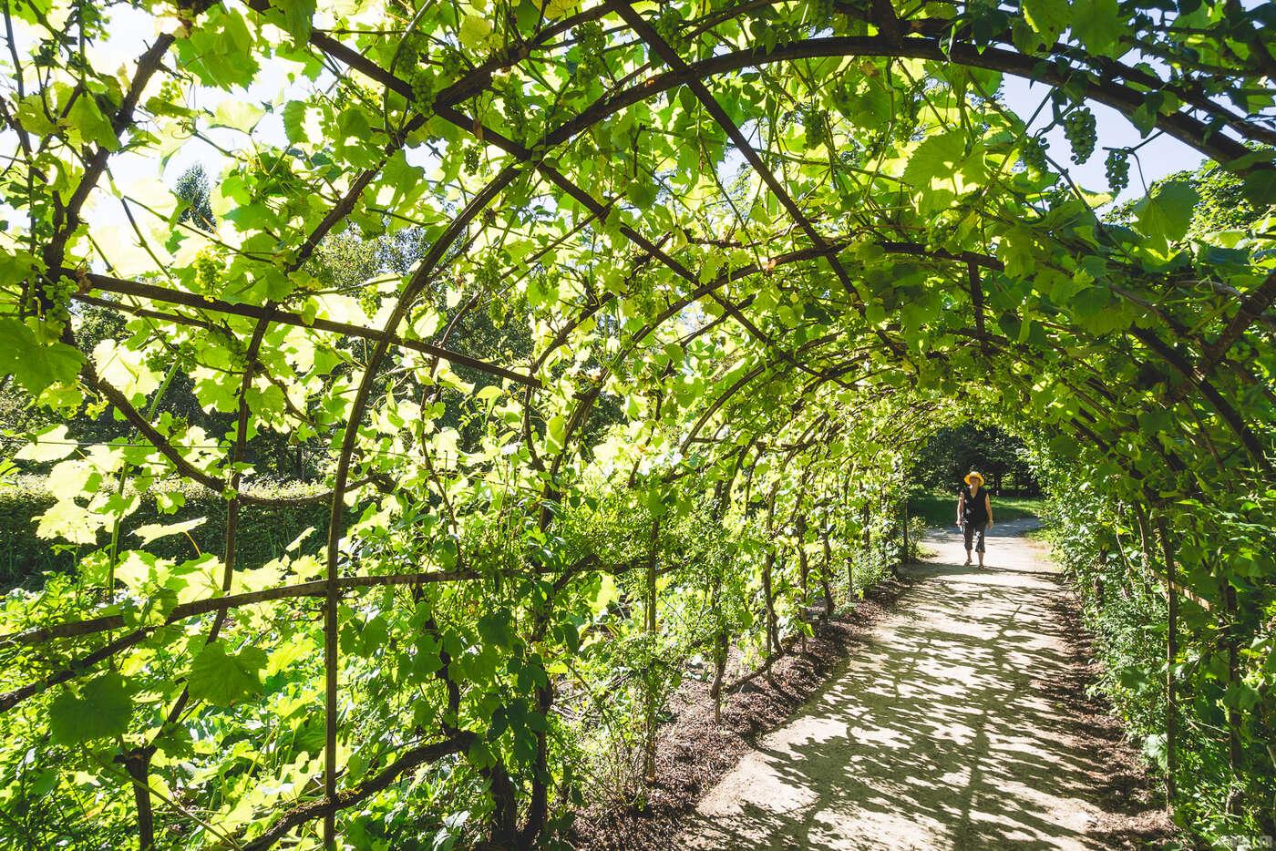 Hameau de la Reine, Jardins de Versailles