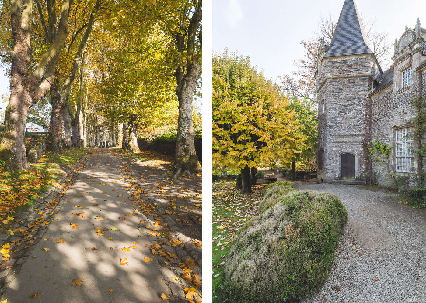 Château de Rochefort-en-Terre