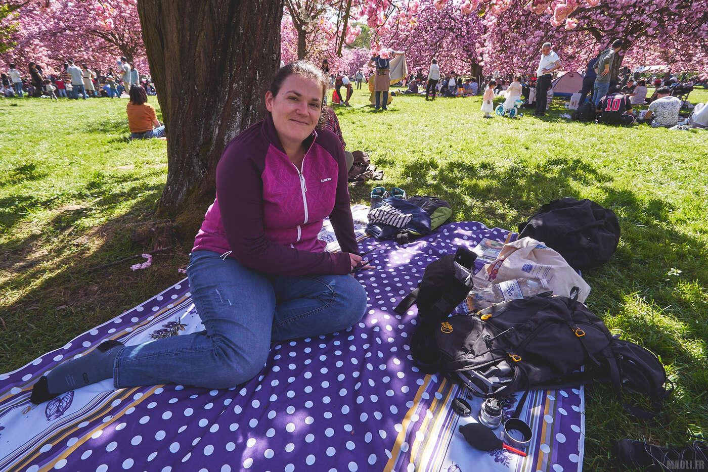 Pique-nique au Parc de Sceaux