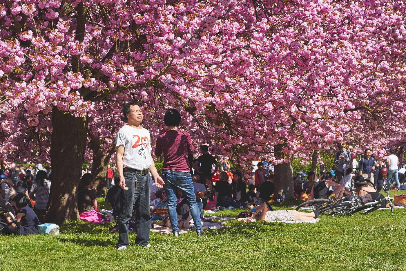 Bain de soleil au parc de Sceaux