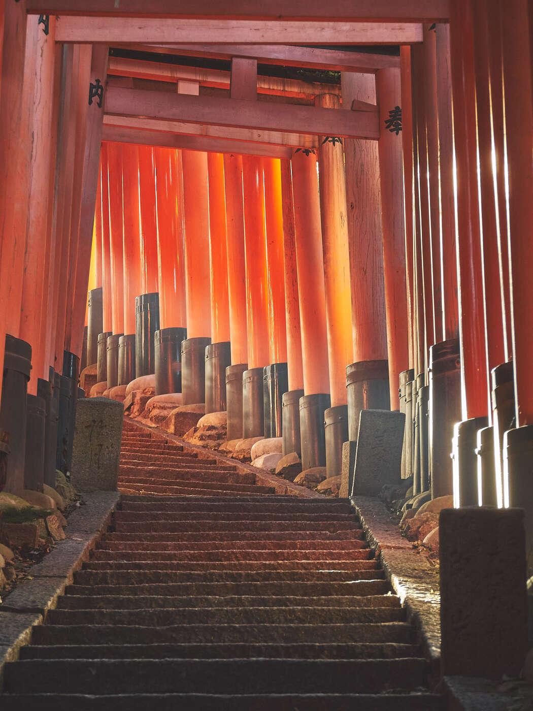 Lumière en au de la boucle de Fushimi-Inari