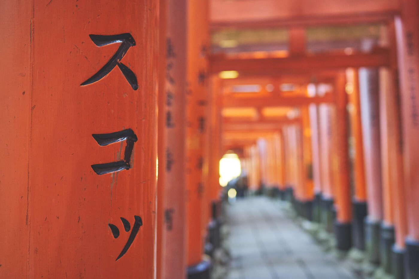 Détail torii Fushimi-Inari