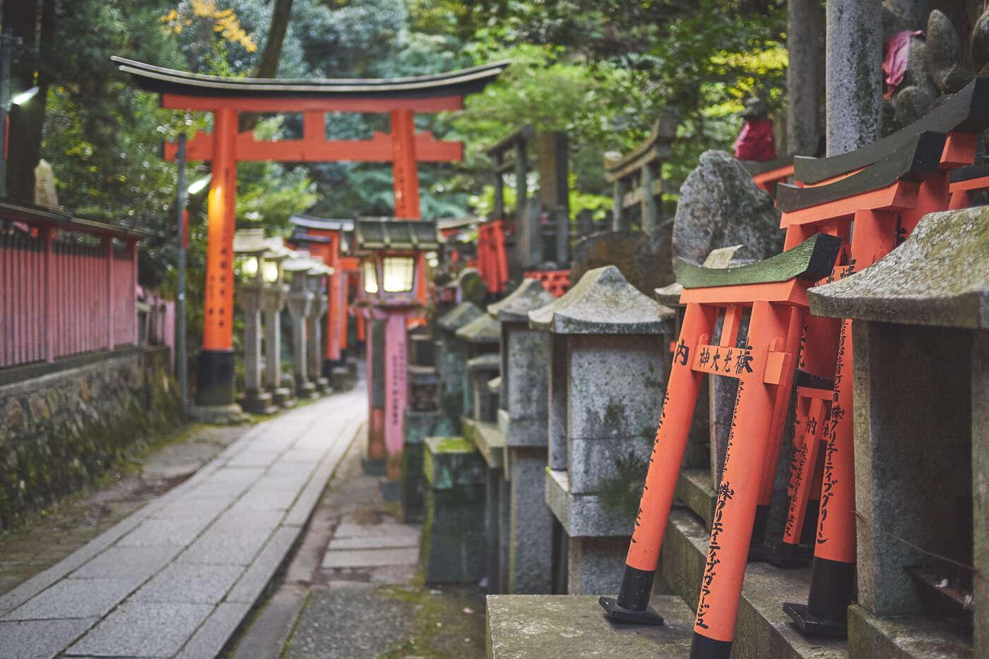 Mini torii de Fushimi-Inari