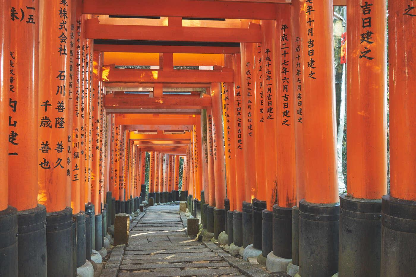 Torii de fushimi-Inari