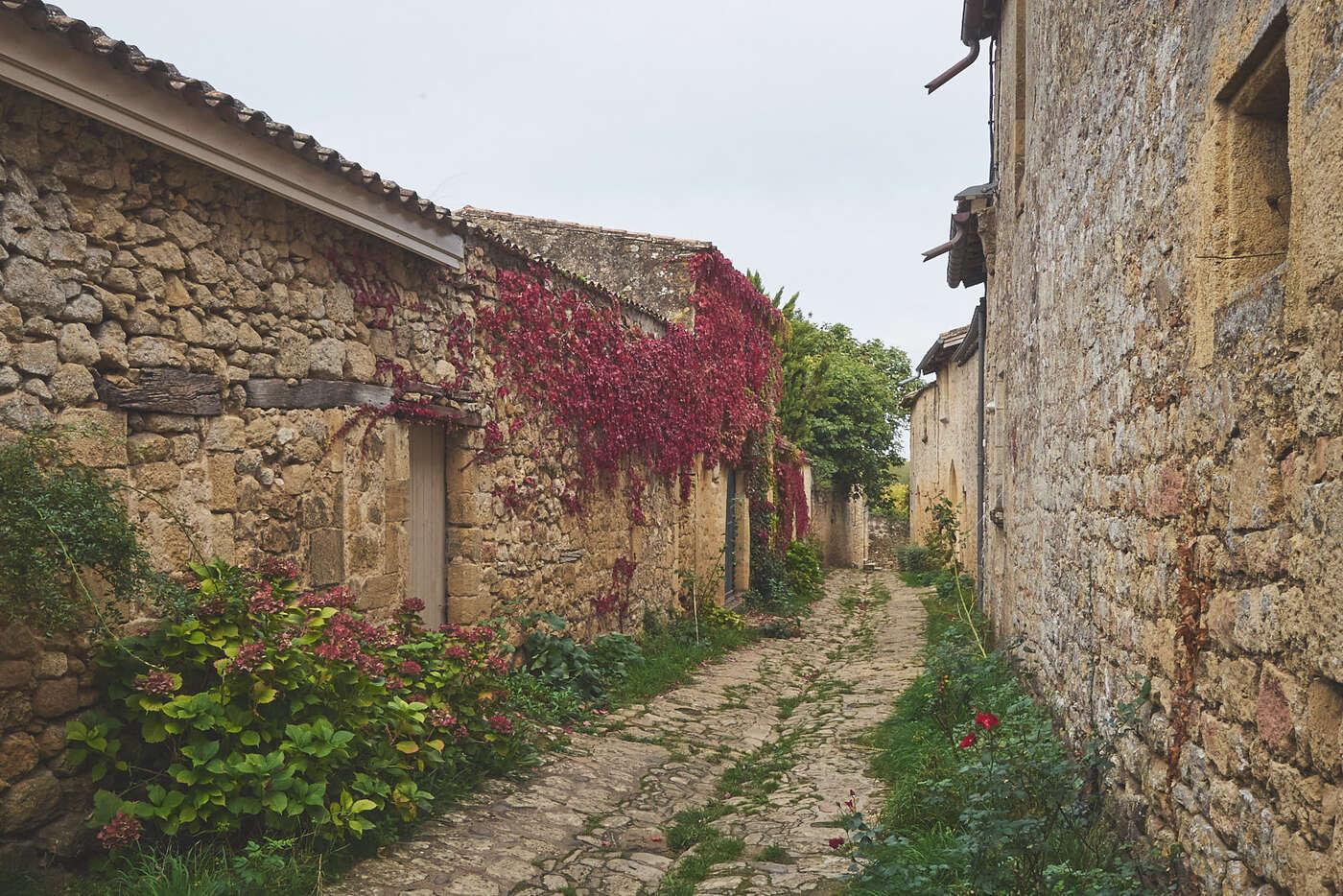 Ruelles de Saint-Macaire