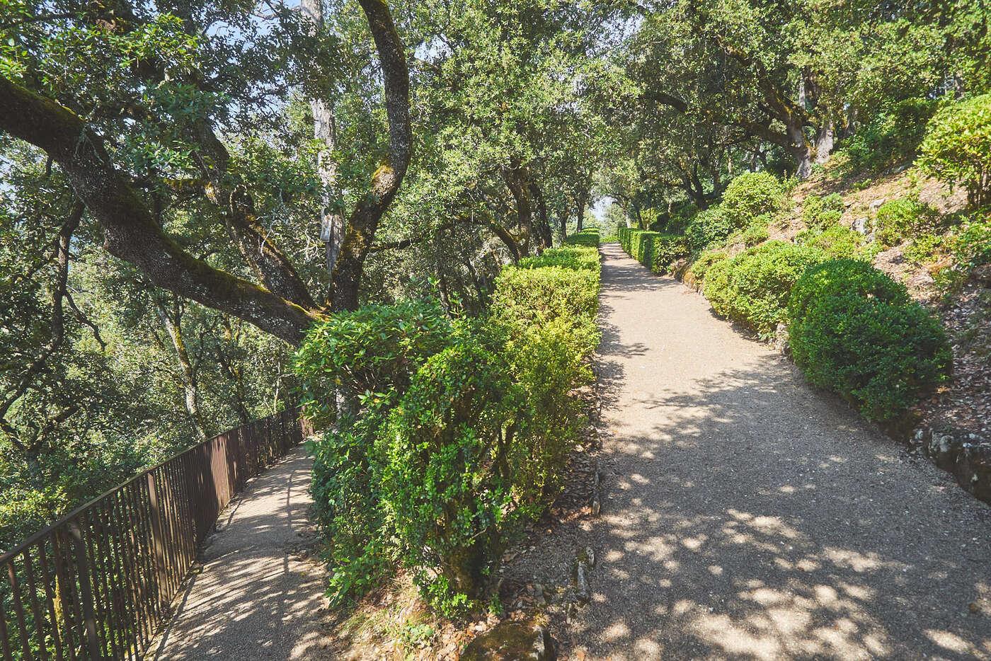 Chemins des jardins de Marqueyssac