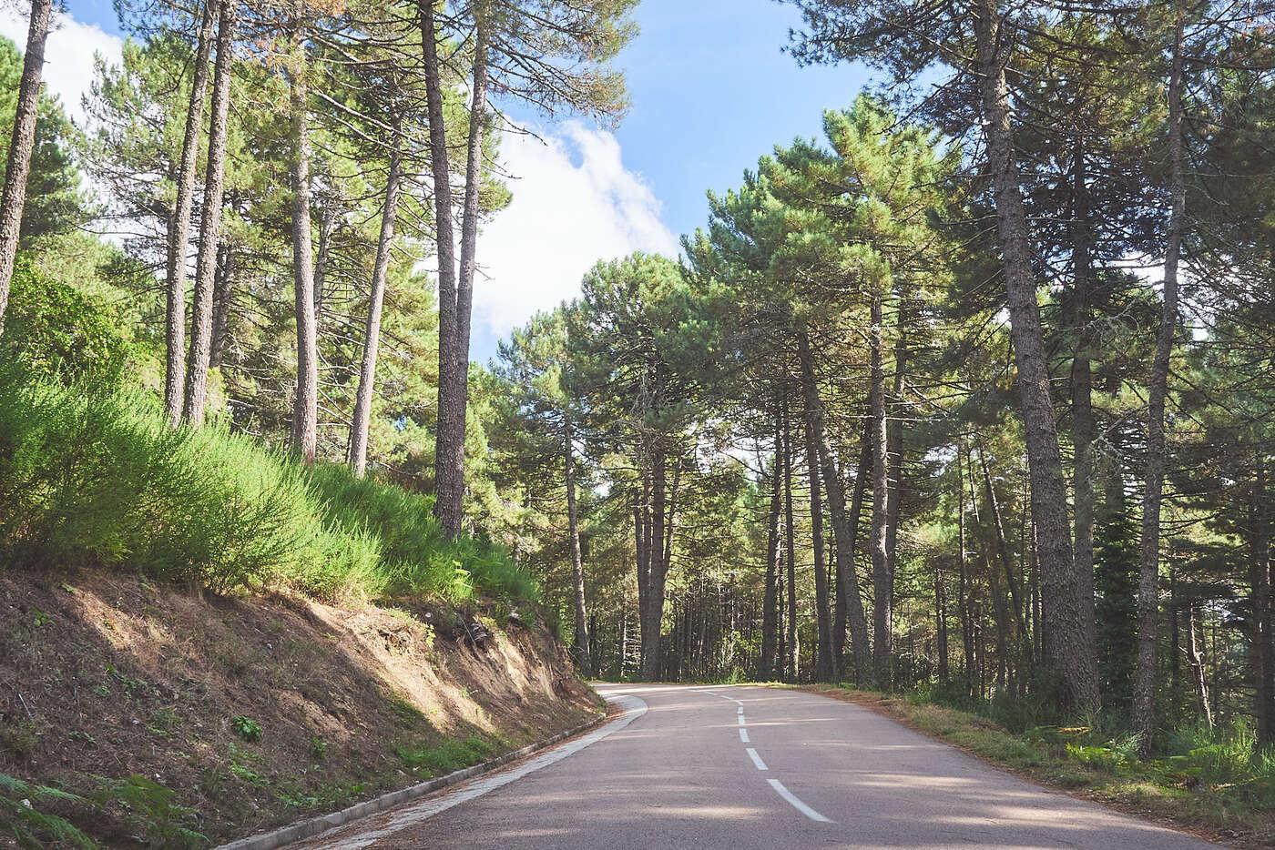Routes de l'Alta-Rocca