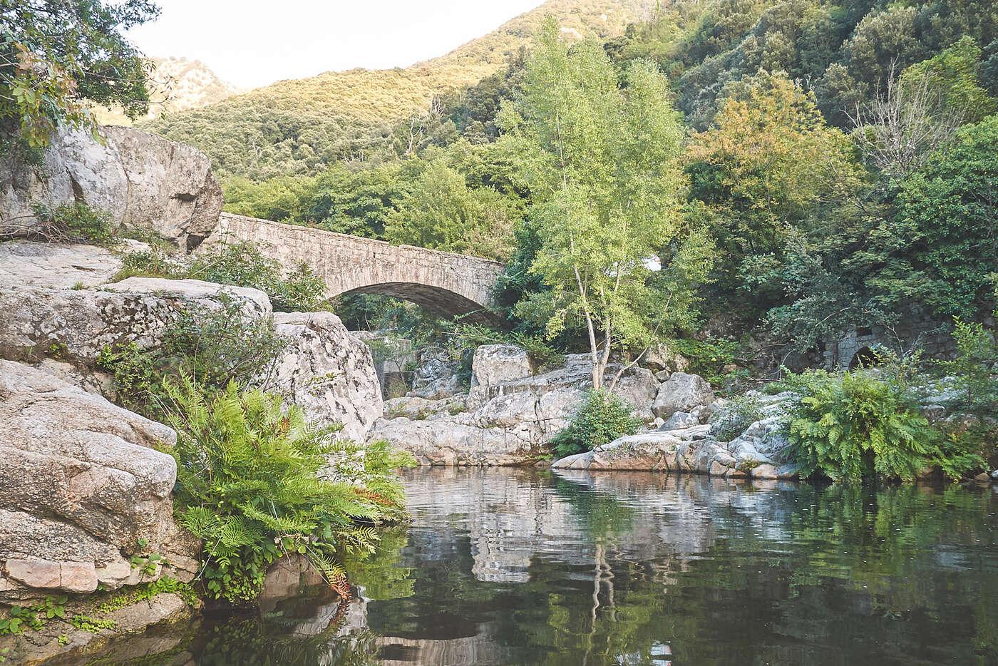 Rivière de Zoza, en Corse