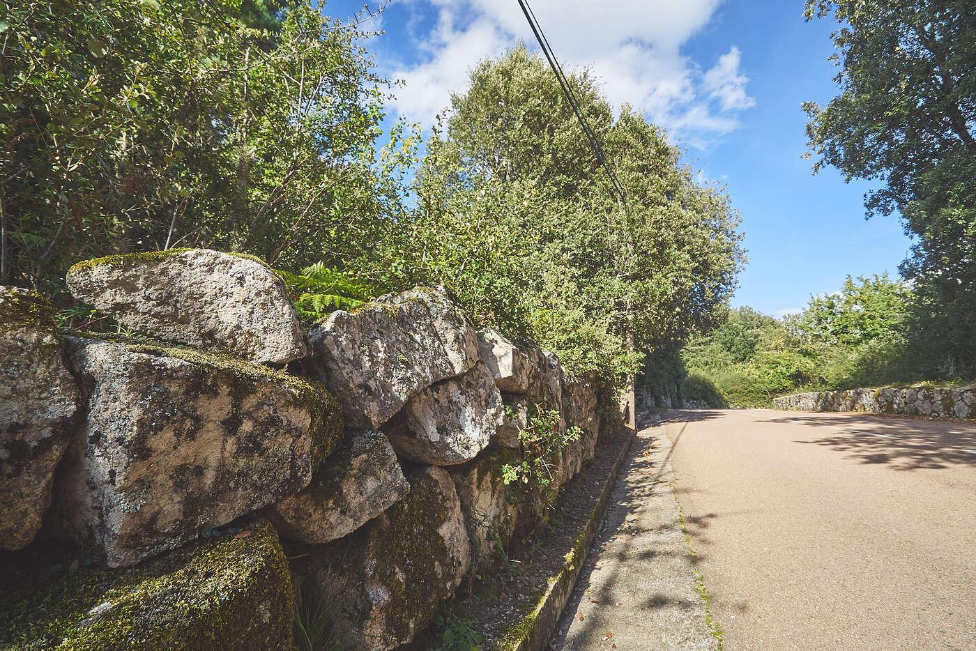Route dans l'Alta Rocca