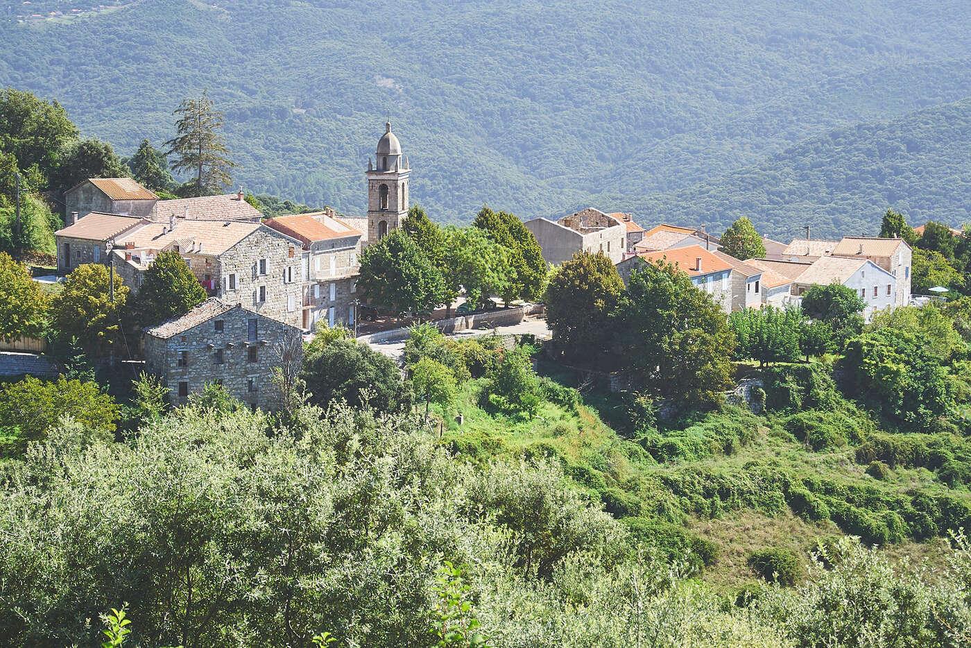 Mela, en Corse