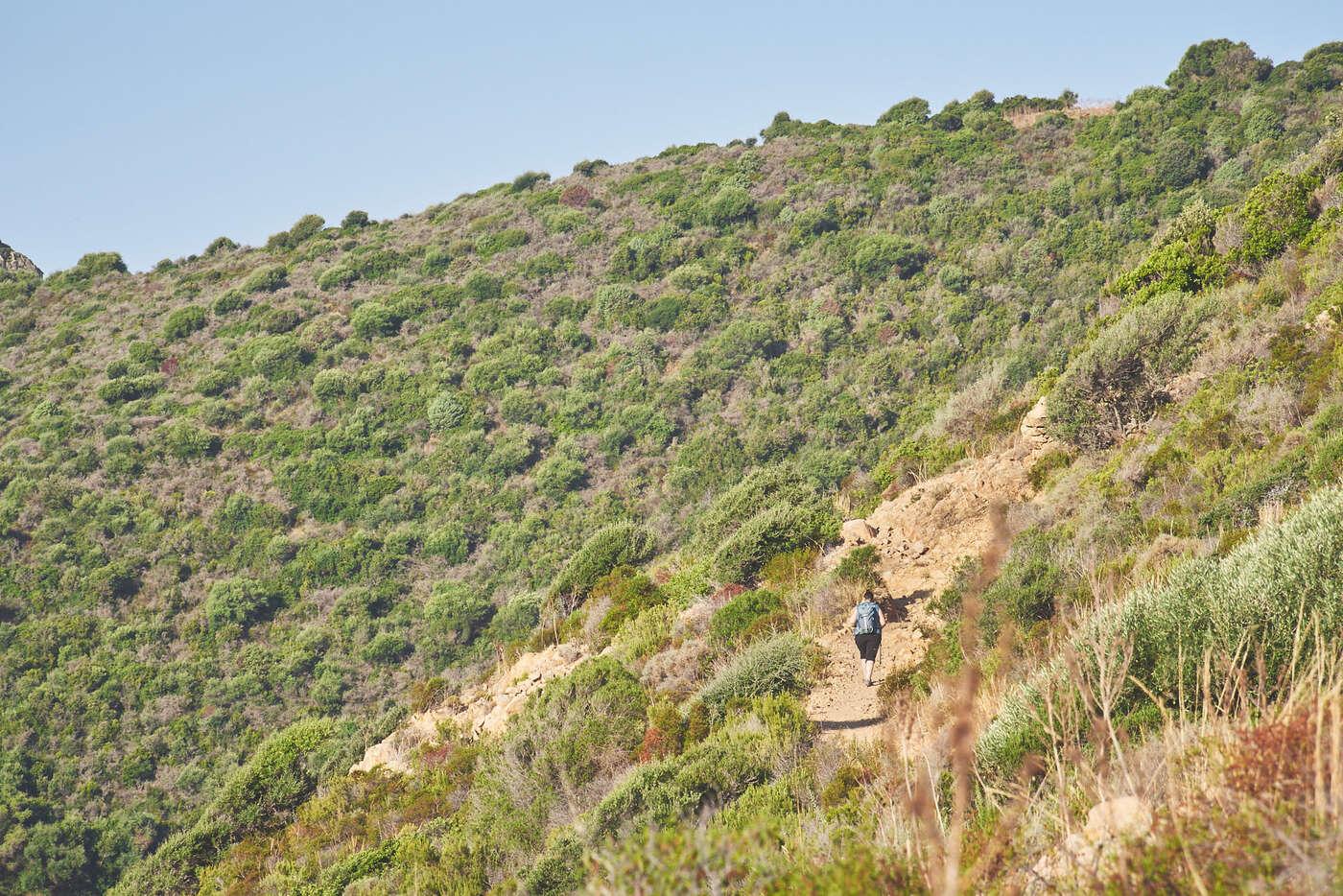 Randonnée du Capo Rosso